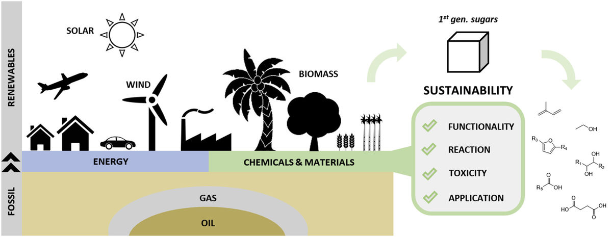 Straightforward sustainability assessment of sugar-derived molecules from first-generation biomass