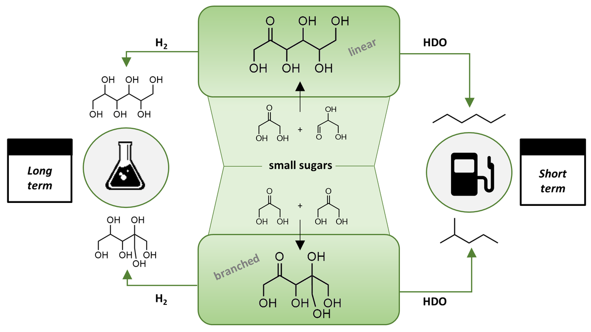 Branching-first: synthesizing C-C skeletal branched bio-based chemicals from sugars