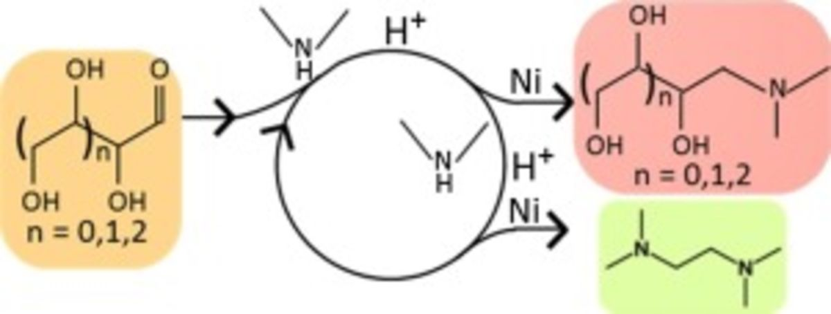 Kinetics of Homogeneous and Heterogeneous Reactions in the Reductive Aminolysis of Glucose with Dimethylamine.