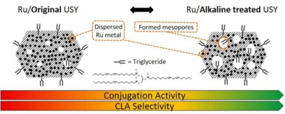 Heterogeneous conjugation of vegetable oil with alkaline treated highly dispersed Ru/USY catalysts